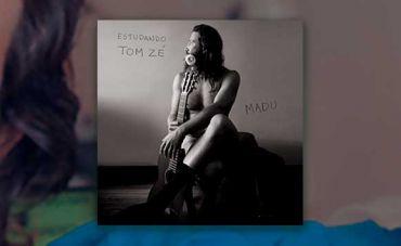 Um belo, mas curto, estudo sobre Tom Zé
